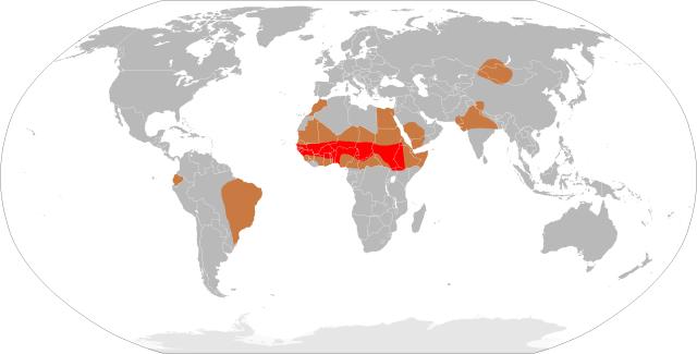 Meningitis-Epidemics-World-Map